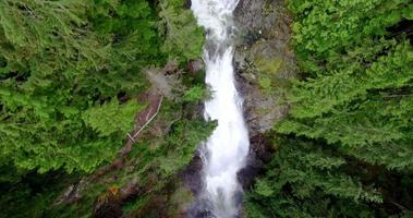 aérea acima de cachoeiras naturais extremamente grandes em uma floresta de pinheiros video