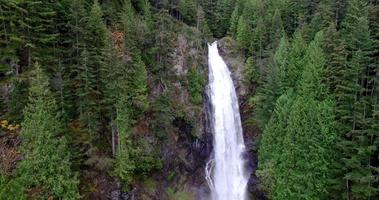 Vista aérea de cascadas en lo profundo del bosque.