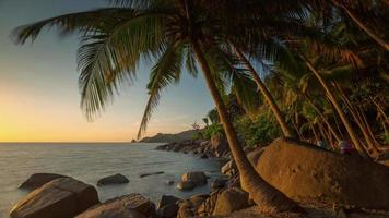 Panorama de la playa de la palma de phuket turístico al atardecer de Tailandia 4k lapso de tiempo