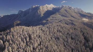 Helicopter Shot of Snowy Gunn Peak and Mountain Power Lines in Winter Season video