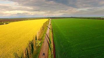 Luftaufnahme der Vorstadtstraße zwischen Raps und Weizenfeldern