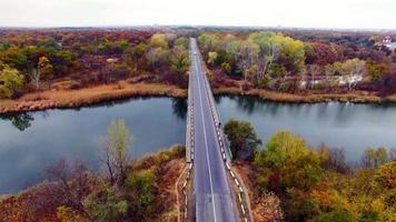 vista aerea della strada attraverso il bosco in autunno. video