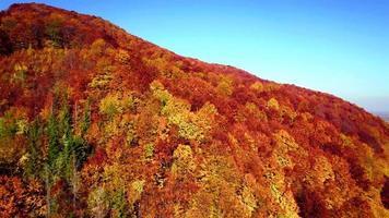 vista aérea de las montañas de los cárpatos de otoño video