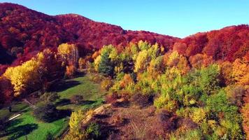 vista aerea delle montagne dei Carpazi in autunno video