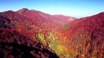 Aerial view of autumn Carpathians mountains video