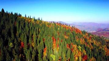 Luftaufnahme der Herbstkarpatenberge video