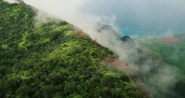 vista aerea che volano sopra i picchi di montagna della giungla, na costa di pali kauai