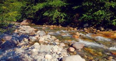 4K Rocks in Mountain River Stream, Summer Day