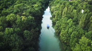 velero en el río. bosque tropical. vista aérea. vídeo
