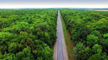 Luftaufnahme der Straße durch grünen Wald. video