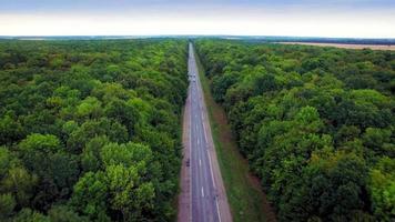 vista aerea della strada attraverso la foresta verde. video
