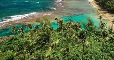 Luftaufnahme, die über Kokospalmen fliegt, die tropische blaue Lagune enthüllen video