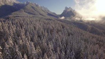 Majestic Pacific Northwest Aerial of Winter Snow on Mountains and Forest Tree video