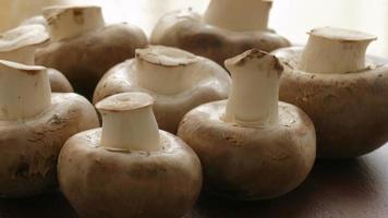 funghi prataioli grezzi