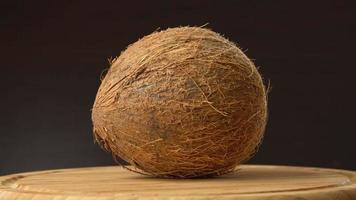 coco tropical maduro girando sobre una mesa de madera sobre fondo negro. frutas tropicales, loopable