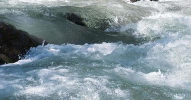 arroyos de un río de montaña