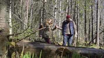 Walking in Wilderness video