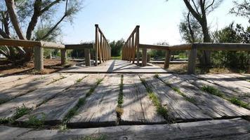 attraversando il ponte di legno fino al molo