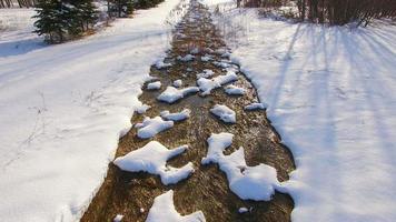 Volando bajo sobre un arroyo tranquilo cubierto de nieve del invierno