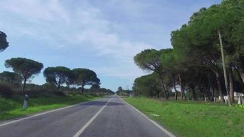 guidando su una strada