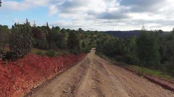 guida su una strada sterrata in campagna