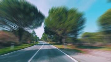 guida veloce su una strada nella foresta