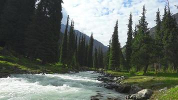 Landscape with mountains, fir trees and river.  Tian Shan, Kyrgyzstan