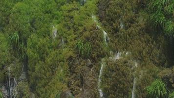 iguazu Wasserfälle, in der Nähe einer der Kaskaden an den größten Kataratas der Welt, Brasilien - Argentinien. rotes Filmmaterial der Kinokamera