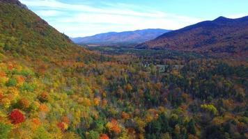 vídeo de drone aéreo de folhagem de outono