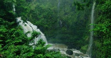 Amazing waterfall in tropical rain forest on the road to Hana in Maui, Hawaii