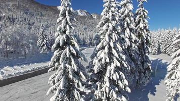 bela estação de esqui nevada soriska planina, eslovênia video