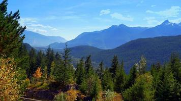 Beautiful Panorama Mountain Range Landscape, Fir and Pine Trees, Blue Peaks video
