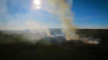 Fire burns stubble on the field, aerial video