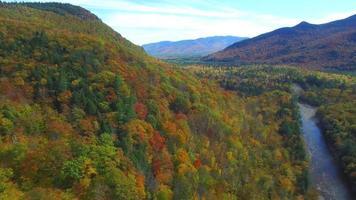 video de drone aéreo de follaje de otoño