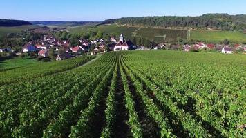 vila de viviers sur artaut, champagne-ardennes, frança video