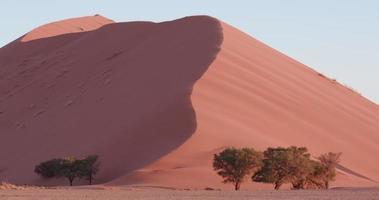Lasso di tempo di 4 k del sole che tramonta sulle dune di sabbia all'interno del parco nazionale del namib-naukluft video