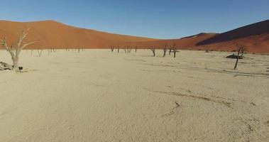 Vista aérea de 4k do vlei morto - uma panela de argila branca dentro do parque nacional namib-naukluft video