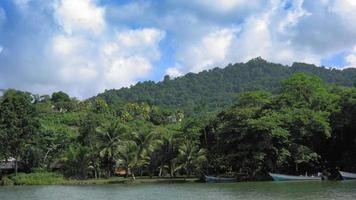 vista panorâmica da praia com árvores e montanha contra céu nublado, trinidad, trinidad e tobago video