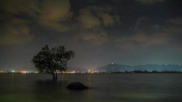 Thailandia notte illuminazione phuket città buddha spiaggia panorama 4k tima lapse video