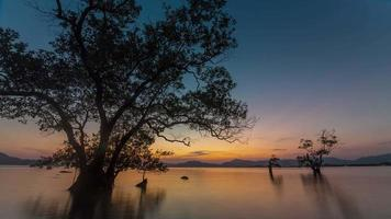 Tailandia puesta de sol cielo phuket isla árbol playa 4k lapso de tiempo