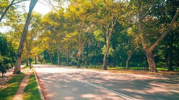 dia ensolarado estrada 4k corredores do Central Park Time Lapse de Nova York