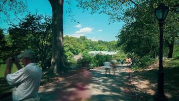 Walking Street 4k Zeitraffer vom New York Central Park video