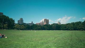 Sommer Central Park 4k Zeitraffer von New York City video