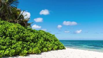 belle nuvole sulla spiaggia vicino al timelapse dell'oceano