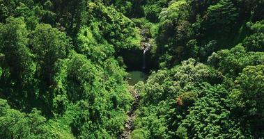 vista aérea da piscina da cachoeira na selva video