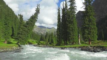 paisaje con montañas, abetos y río. tian shan, kirguistán video