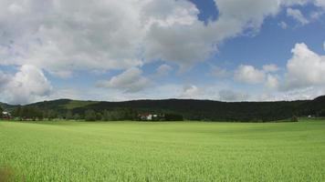 fattoria del villaggio norvegese vicino a oslo, norvegia