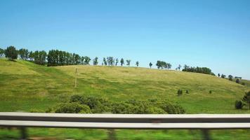 pov: muoversi lungo una verde collina e alberi verdi ad altai, russia