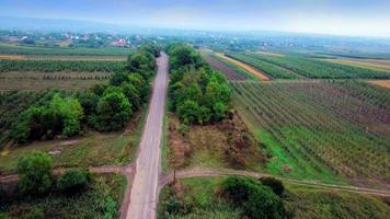 Luftaufnahme der Vorstadtstraße zwischen Feldern video