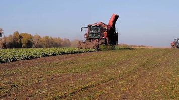 Landwirtschaft und Ernte